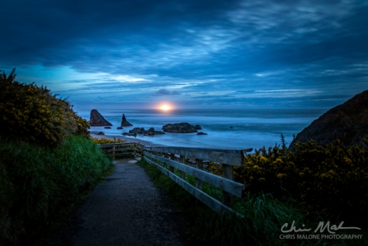 March 25 2017 - 479 - Bandon Beach Shoot-Edit-2