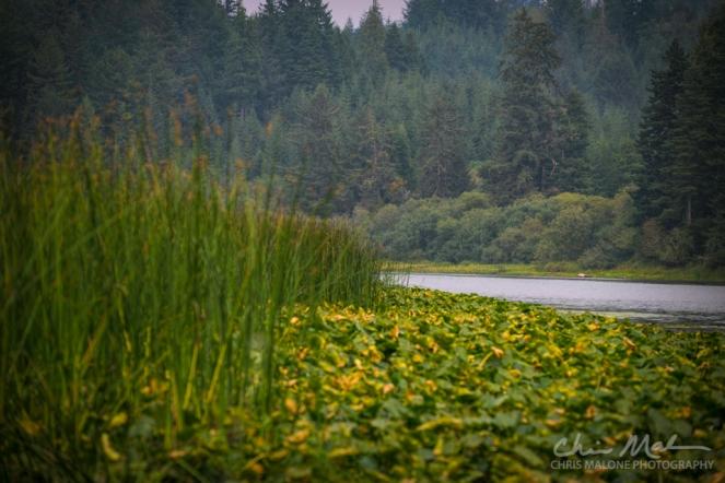 Lakeside Camping - 0019-11-Edit